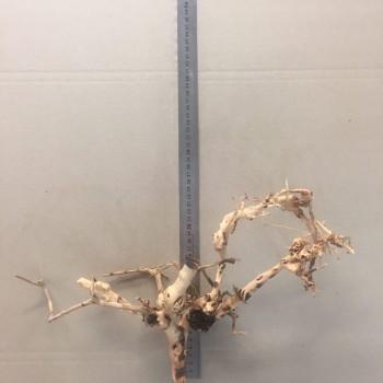 Коряга паутина шарлотты 4