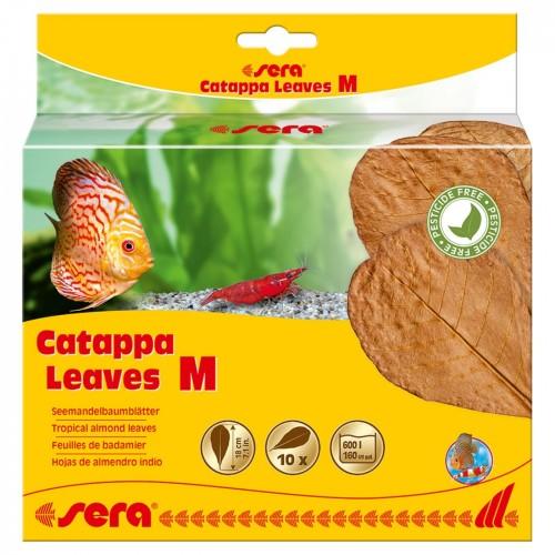 Sera Catappa Leaves M 18 см (10 шт) - листья индийского миндаля